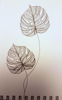 Palmes (3)